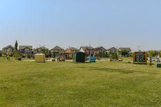 Photo 46: 4923 TERWILLEGAR Common in Edmonton: Zone 14 Attached Home for sale : MLS®# E4196133