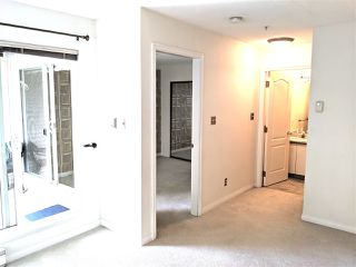 "Photo 16: 310 2429 HAWTHORNE Avenue in Port Coquitlam: Central Pt Coquitlam Condo for sale in ""STONEBROOK"" : MLS®# R2492583"