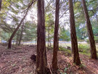 Photo 8: Lt 37 Pat Burns Ave in : Isl Gabriola Island Land for sale (Islands)  : MLS®# 859556