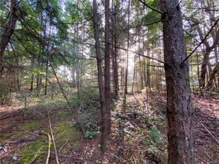 Photo 6: Lt 37 Pat Burns Ave in : Isl Gabriola Island Land for sale (Islands)  : MLS®# 859556
