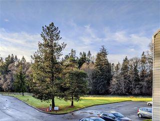 Photo 39: 211 205 1st St in : CV Courtenay City Condo for sale (Comox Valley)  : MLS®# 862396