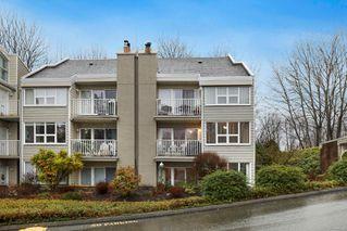 Photo 6: 211 205 1st St in : CV Courtenay City Condo for sale (Comox Valley)  : MLS®# 862396