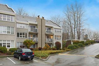 Photo 25: 211 205 1st St in : CV Courtenay City Condo for sale (Comox Valley)  : MLS®# 862396
