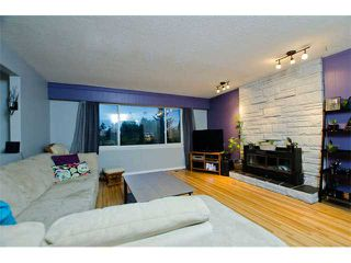 Photo 2: 4952 60A Street in Ladner: Holly House for sale : MLS®# V1043314