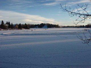 Photo 20: 151 LAKE ADAMS Crescent SE in Calgary: Lake Bonavista Residential Detached Single Family for sale : MLS®# C3648155