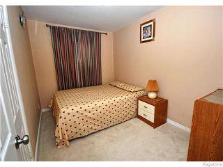 Photo 8: 172 Berrydale Avenue in Winnipeg: St Vital Residential for sale (South East Winnipeg)  : MLS®# 1608077