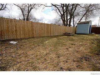 Photo 10: 172 Berrydale Avenue in Winnipeg: St Vital Residential for sale (South East Winnipeg)  : MLS®# 1608077