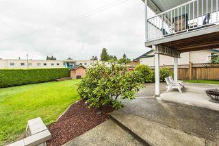 Photo 7: 20349 115 Avenue in Maple Ridge: Southwest Maple Ridge House for sale : MLS®# R2084174