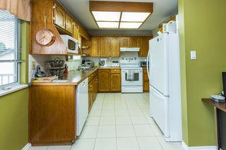 Photo 15: 20349 115 Avenue in Maple Ridge: Southwest Maple Ridge House for sale : MLS®# R2084174