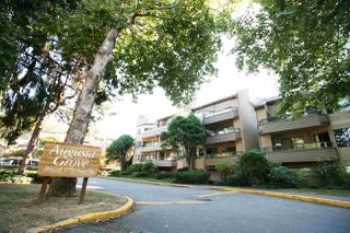 Photo 15: 103 1750 AUGUSTA Avenue in Burnaby: Simon Fraser Univer. Condo for sale (Burnaby North)  : MLS®# R2103118
