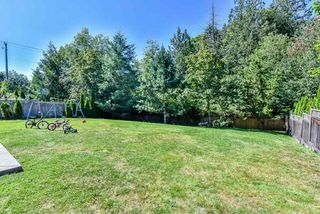 Photo 19: 16833 87 Avenue in Surrey: Fleetwood Tynehead House for sale : MLS®# R2116704