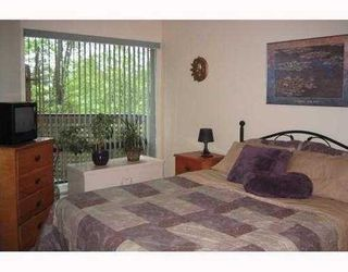 Photo 9: 302 3187 MOUNTAIN Highway in North Vancouver: Home for sale : MLS®# V754515