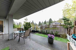 Photo 15: 205 11519 BURNETT Street in Maple Ridge: East Central Condo for sale : MLS®# R2162831