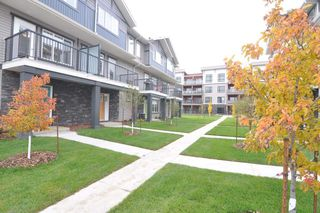 Main Photo: 77 12815 CUMBERLAND Road in Edmonton: Zone 27 Townhouse for sale : MLS®# E4130894