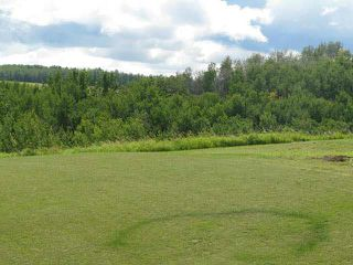 Photo 2: 1450A TWP ROAD 534: Rural Parkland County Rural Land/Vacant Lot for sale : MLS®# E4135635