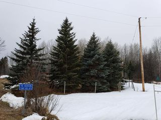 Photo 4: 15 42036 TWP RD 471: Rural Wetaskiwin County Rural Land/Vacant Lot for sale : MLS®# E4148881
