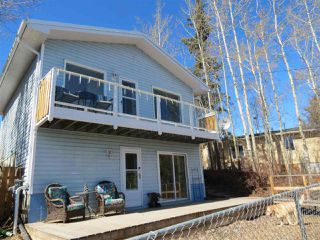 Photo 29: 6305 Shedden Drive: Rural Lac Ste. Anne County House for sale : MLS®# E4151155