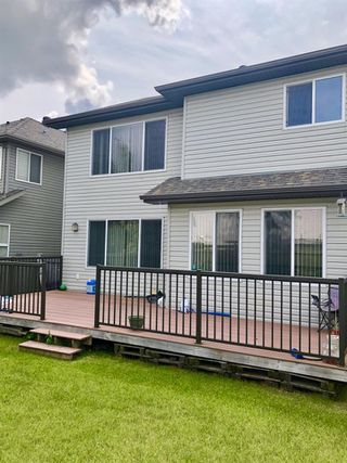 Photo 4: 20320 46 Avenue in Edmonton: Zone 58 House for sale : MLS®# E4164476