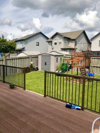 Photo 5: 20320 46 Avenue in Edmonton: Zone 58 House for sale : MLS®# E4164476