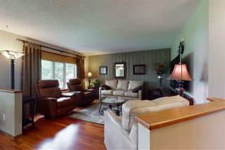 Photo 14: 50420 RGE RD 243: Beaumont House for sale : MLS®# E4206525