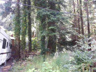 Photo 5: LOT 0 NAYLOR Road in Sechelt: Sechelt District Land for sale (Sunshine Coast)  : MLS®# R2480346