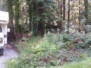 Photo 4: LOT 0 NAYLOR Road in Sechelt: Sechelt District Land for sale (Sunshine Coast)  : MLS®# R2480346