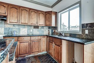 Photo 16: 36 ROYAL HIGHLAND Court NW in Calgary: Royal Oak Detached for sale : MLS®# A1029258