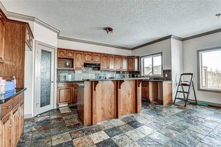 Photo 11: 36 ROYAL HIGHLAND Court NW in Calgary: Royal Oak Detached for sale : MLS®# A1029258