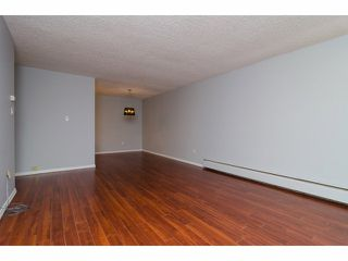"Photo 6: 303 7180 LINDEN Avenue in Burnaby: Highgate Condo for sale in ""Linden House"" (Burnaby South)  : MLS®# V1054983"