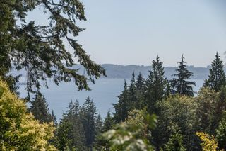 Photo 15: 3058 SPENCER Drive in West Vancouver: Altamont House for sale : MLS®# R2123954
