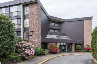 "Photo 1: 108 10631 NO 3 Road in Richmond: Broadmoor Condo for sale in ""Admirals Walk"" : MLS®# R2164437"