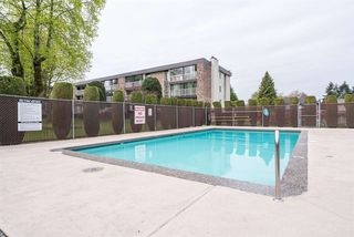 "Photo 19: 108 10631 NO 3 Road in Richmond: Broadmoor Condo for sale in ""Admirals Walk"" : MLS®# R2164437"