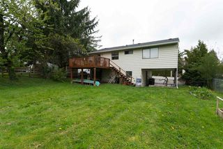 Photo 15: 26448 29 Avenue in Langley: Aldergrove Langley House for sale : MLS®# R2263674