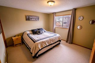 Photo 19: 205 LILAC Drive: Sherwood Park House for sale : MLS®# E4143043