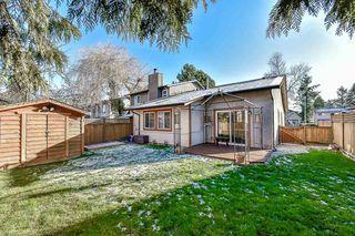 "Photo 19: 13435 68A Avenue in Surrey: West Newton House 1/2 Duplex for sale in ""Bentley"" : MLS®# R2339160"