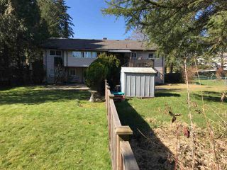 """Photo 4: 5876 - 5878 172 Street in Surrey: Cloverdale BC House Duplex for sale in """"Cloverdale"""" (Cloverdale)  : MLS®# R2343112"""