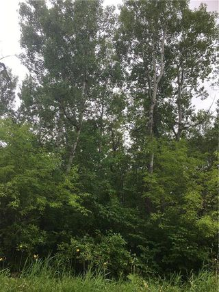 Photo 4: 25 Moon Shadow Road in Alonsa: Lake Manitoba Narrows Residential for sale (R19)  : MLS®# 1912159