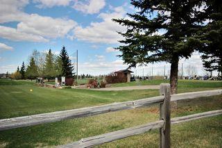 Photo 19: 313 279 Suder Greens Drive NW in Edmonton: Zone 58 Condo for sale : MLS®# E4157006