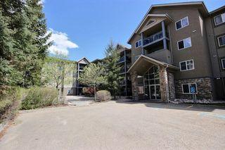 Photo 8: 313 279 Suder Greens Drive NW in Edmonton: Zone 58 Condo for sale : MLS®# E4157006