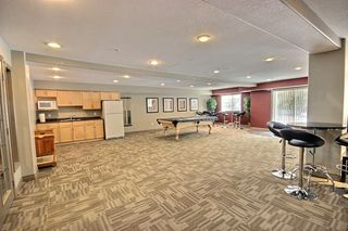 Photo 16: 313 279 Suder Greens Drive NW in Edmonton: Zone 58 Condo for sale : MLS®# E4157006