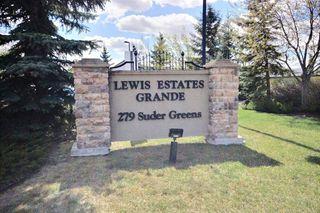 Photo 18: 313 279 Suder Greens Drive NW in Edmonton: Zone 58 Condo for sale : MLS®# E4157006