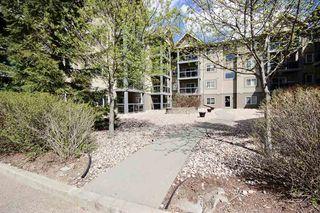 Photo 15: 313 279 Suder Greens Drive NW in Edmonton: Zone 58 Condo for sale : MLS®# E4157006