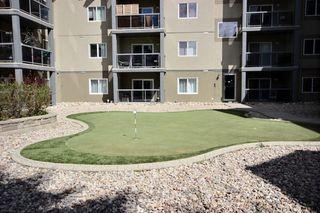 Photo 9: 313 279 Suder Greens Drive NW in Edmonton: Zone 58 Condo for sale : MLS®# E4157006