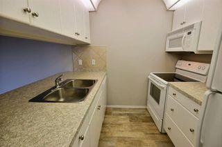 Photo 4: 313 279 Suder Greens Drive NW in Edmonton: Zone 58 Condo for sale : MLS®# E4157006