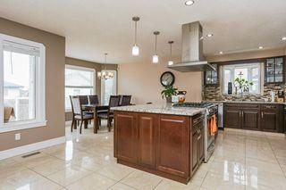 Photo 11: 1115 FALCONER Road in Edmonton: Zone 14 House for sale : MLS®# E4157538
