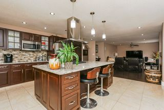 Photo 14: 1115 FALCONER Road in Edmonton: Zone 14 House for sale : MLS®# E4157538