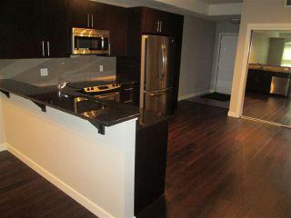 Photo 12: 205 10811 72 Avenue in Edmonton: Zone 15 Condo for sale : MLS®# E4185518