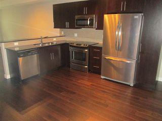 Photo 4: 205 10811 72 Avenue in Edmonton: Zone 15 Condo for sale : MLS®# E4185518