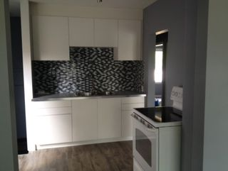 Photo 5: 9846 82 Avenue in Edmonton: Zone 15 House for sale : MLS®# E4188462