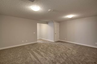 Photo 41: 17431 77 Street in Edmonton: Zone 28 House for sale : MLS®# E4192199